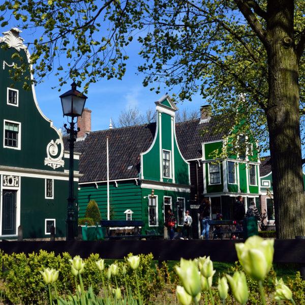 Zaans Schans House