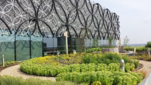 Secret-Garden-library