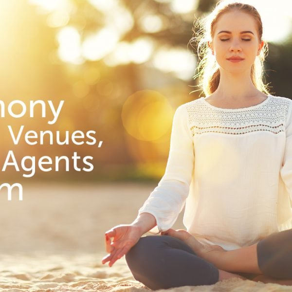 Harmony Within Venues, Every Agents Dream