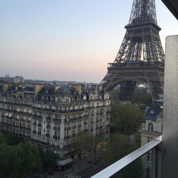 Pullman Paris Eiffel Tower Hotel - View 2